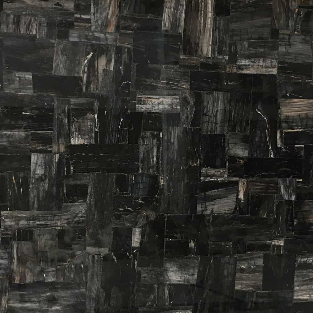 Petrified Wood Black Retro Fossil