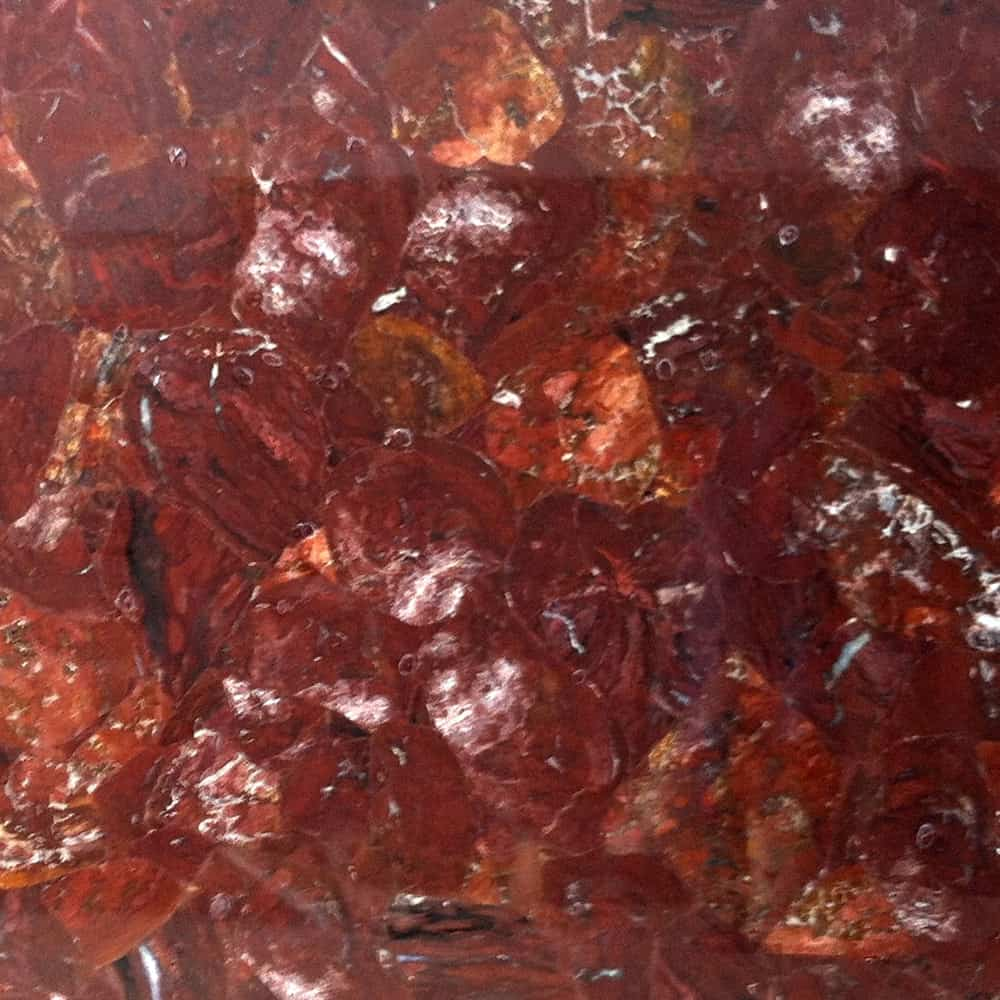 Petrified Wood Red Fossil